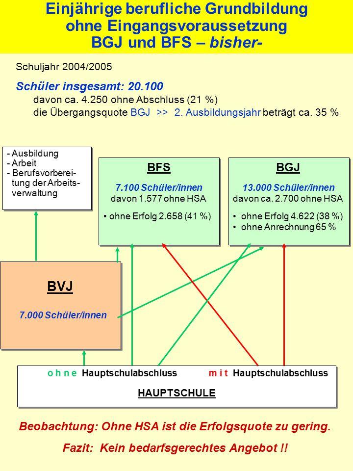 Einjährige berufliche Grundbildung ohne Eingangsvoraussetzung BGJ und BFS – bisher- Schuljahr 2004/2005 Schüler insgesamt: 20.100 davon ca.