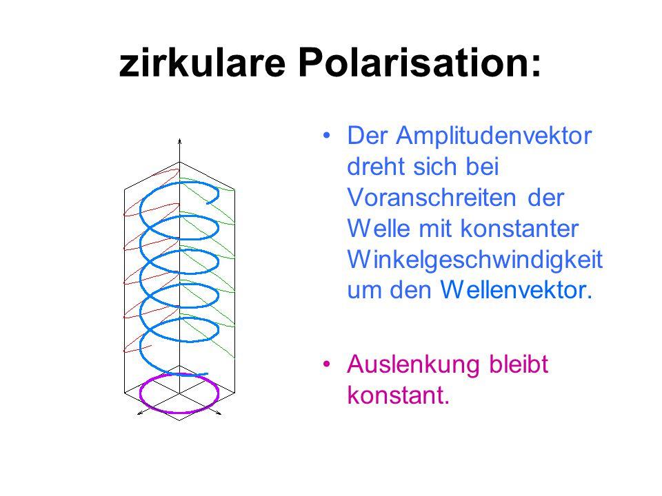 lineare Polarisation: Die Richtung des Amplitudenvektors zeigt immer in die gleiche Richtung. Die Auslenkung ändert.