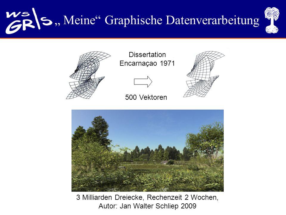 """"""" Meine Graphische Datenverarbeitung 3 Milliarden Dreiecke, Rechenzeit 2 Wochen, Autor: Jan Walter Schliep 2009 Dissertation Encarnaçao 1971 500 Vektoren"""