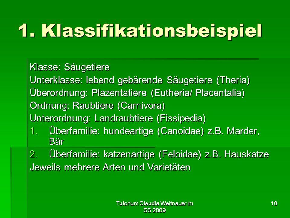 Tutorium Claudia Weitnauer im SS 2009 10 1. Klassifikationsbeispiel Klasse: Säugetiere Unterklasse: lebend gebärende Säugetiere (Theria) Überordnung: