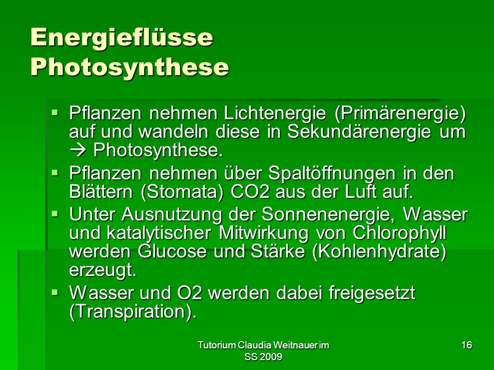 Tutorium Claudia Weitnauer im SS 2009 16 Energieflüsse Photosynthese  Pflanzen nehmen Lichtenergie (Primärenergie) auf und wandeln diese in Sekundärenergie um  Photosynthese.