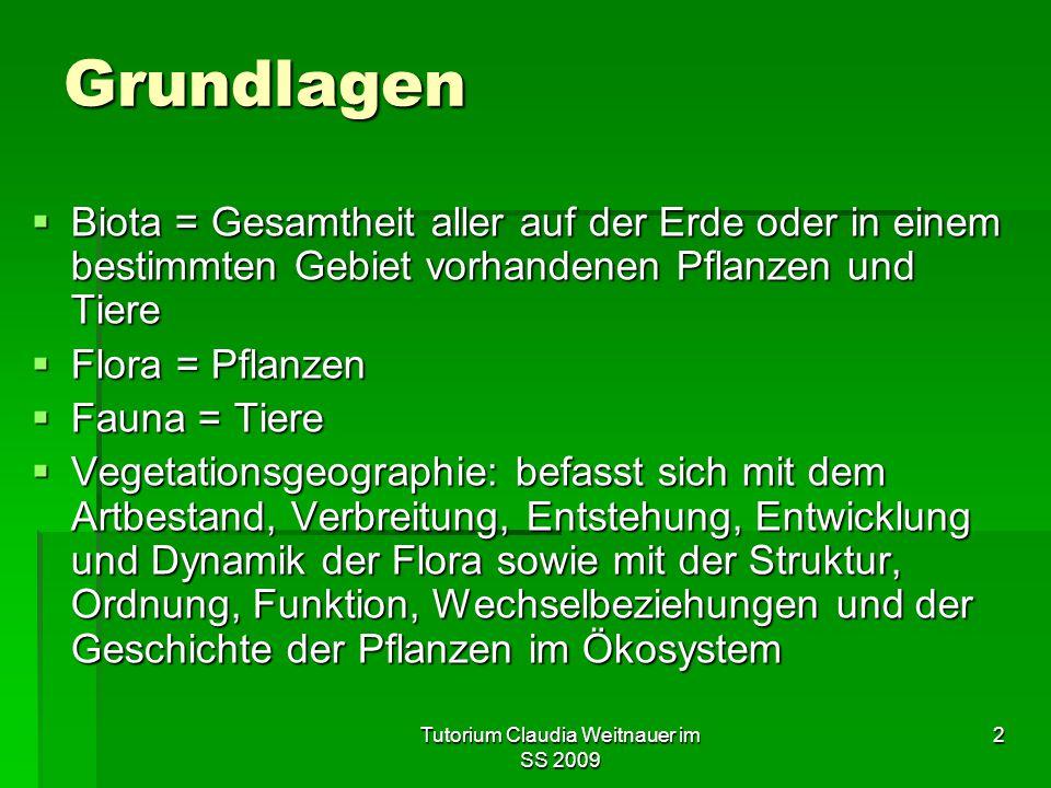 Tutorium Claudia Weitnauer im SS 2009 2 Grundlagen  Biota = Gesamtheit aller auf der Erde oder in einem bestimmten Gebiet vorhandenen Pflanzen und Ti