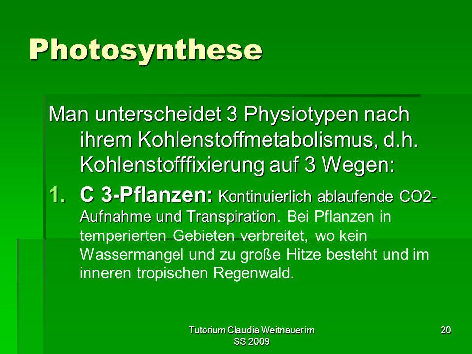 Tutorium Claudia Weitnauer im SS 2009 20 Photosynthese Man unterscheidet 3 Physiotypen nach ihrem Kohlenstoffmetabolismus, d.h. Kohlenstofffixierung a