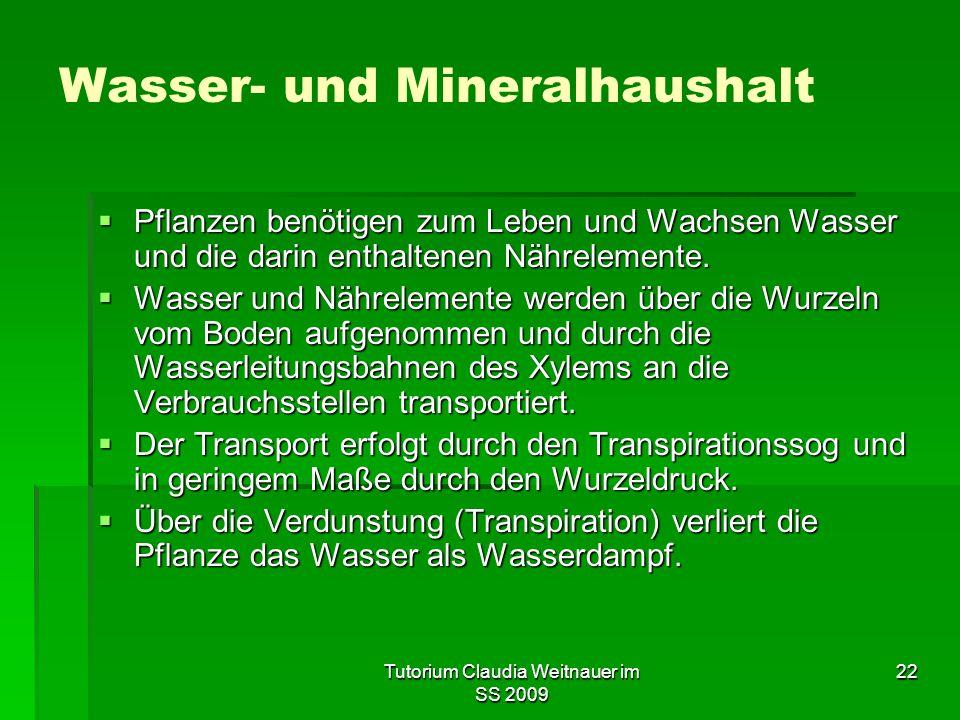 Tutorium Claudia Weitnauer im SS 2009 22 Wasser- und Mineralhaushalt  Pflanzen benötigen zum Leben und Wachsen Wasser und die darin enthaltenen Nährelemente.