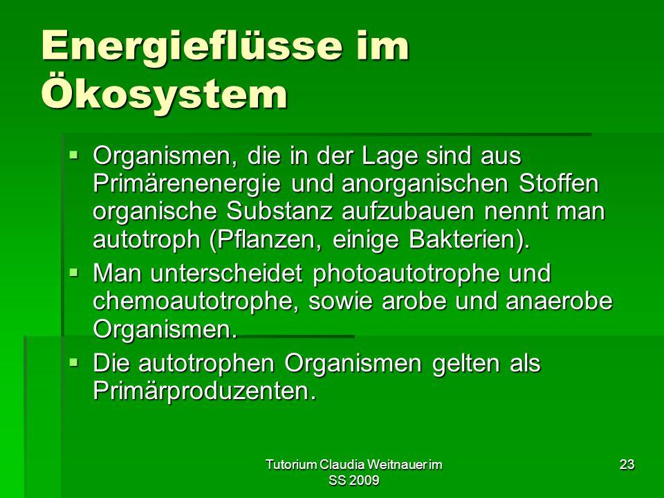 Tutorium Claudia Weitnauer im SS 2009 23 Energieflüsse im Ökosystem  Organismen, die in der Lage sind aus Primärenenergie und anorganischen Stoffen organische Substanz aufzubauen nennt man autotroph (Pflanzen, einige Bakterien).
