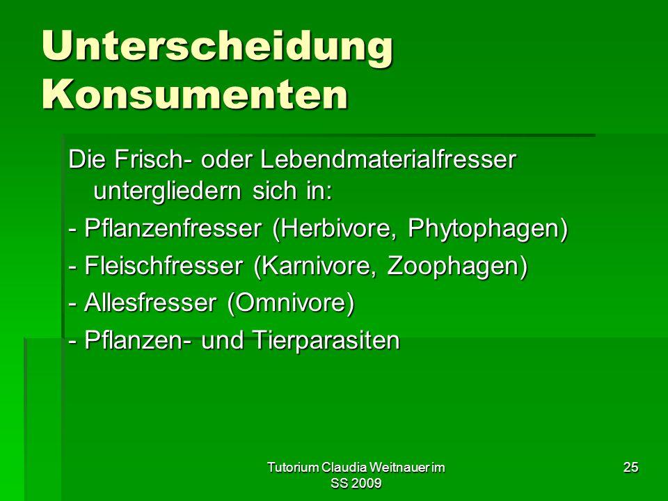 Tutorium Claudia Weitnauer im SS 2009 25 Unterscheidung Konsumenten Die Frisch- oder Lebendmaterialfresser untergliedern sich in: - Pflanzenfresser (Herbivore, Phytophagen) - Fleischfresser (Karnivore, Zoophagen) - Allesfresser (Omnivore) - Pflanzen- und Tierparasiten