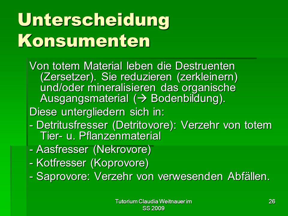 Tutorium Claudia Weitnauer im SS 2009 26 Unterscheidung Konsumenten Von totem Material leben die Destruenten (Zersetzer). Sie reduzieren (zerkleinern)