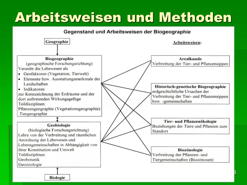 Tutorium Claudia Weitnauer im SS 2009 3 Arbeitsweisen und Methoden
