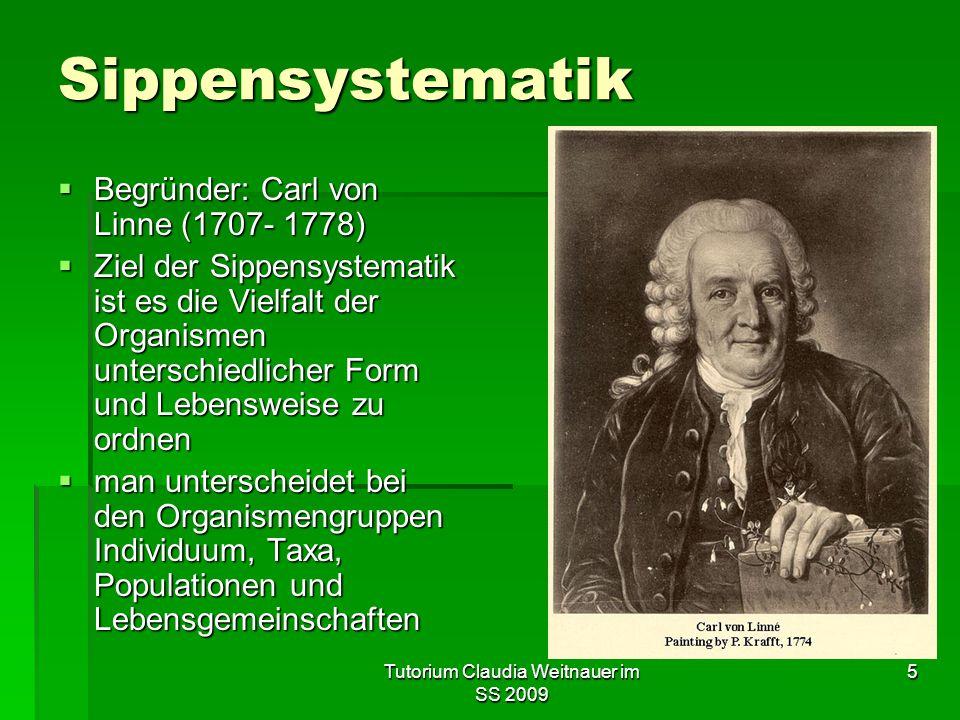 Tutorium Claudia Weitnauer im SS 2009 5 Sippensystematik  Begründer: Carl von Linne (1707- 1778)  Ziel der Sippensystematik ist es die Vielfalt der Organismen unterschiedlicher Form und Lebensweise zu ordnen  man unterscheidet bei den Organismengruppen Individuum, Taxa, Populationen und Lebensgemeinschaften