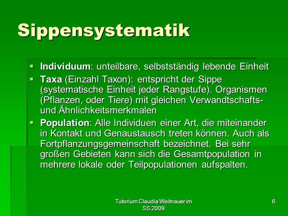 Tutorium Claudia Weitnauer im SS 2009 7 Sippensystematik  Hierarchisch gestuftes System  Jedes Taxon erhält nach dem Prinzip der abnehmenden Verwandtschaft und Ähnlichkeit seinen ihm aufgrund der Stammesentwicklung (Phylogenese) gebührenden Platz.
