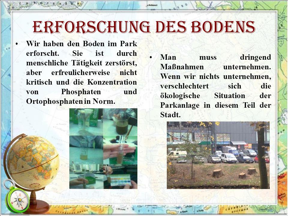 Erforschung des Bodens Wir haben den Boden im Park erforscht.