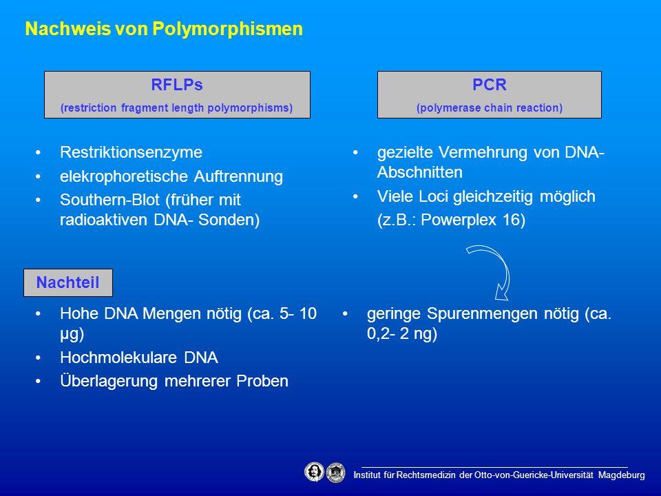 Institut für Rechtsmedizin der Otto-von-Guericke-Universität Magdeburg Nachweis von Polymorphismen RFLPs (restriction fragment length polymorphisms) P