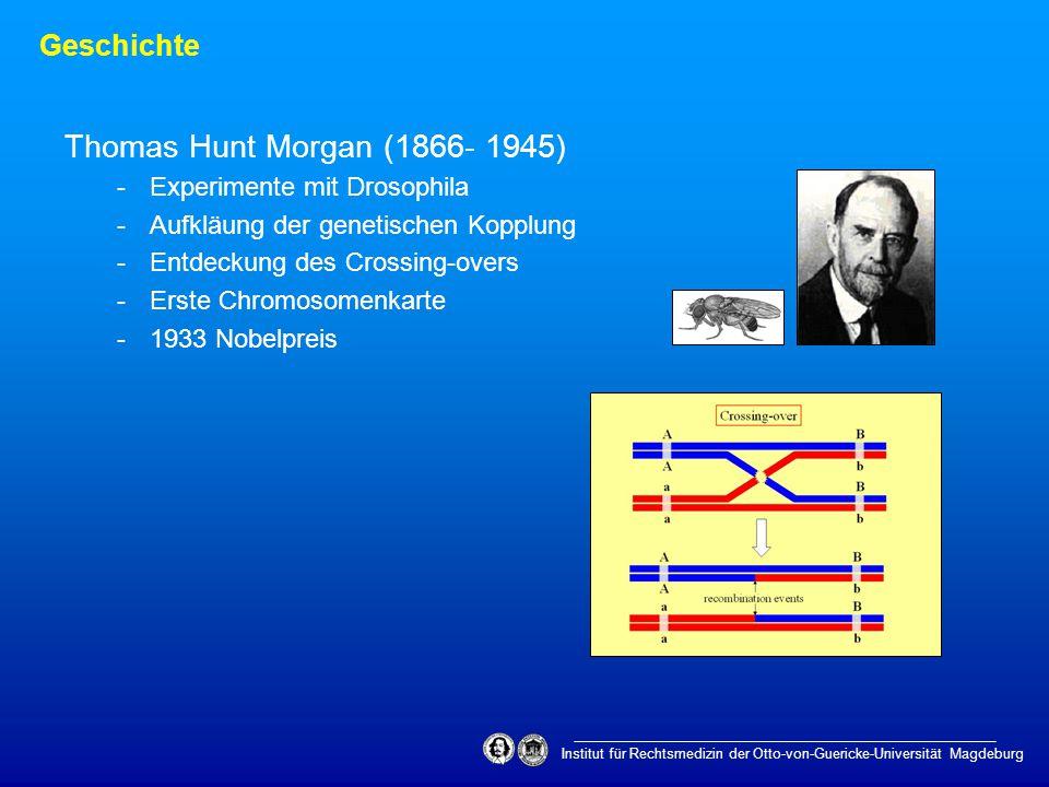 Geschichte Institut für Rechtsmedizin der Otto-von-Guericke-Universität Magdeburg Thomas Hunt Morgan (1866- 1945) -Experimente mit Drosophila -Aufkläu