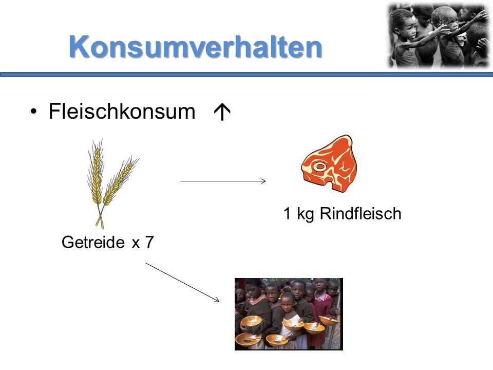 Konsumverhalten Fleischkonsum  Getreide x 7 1 kg Rindfleisch