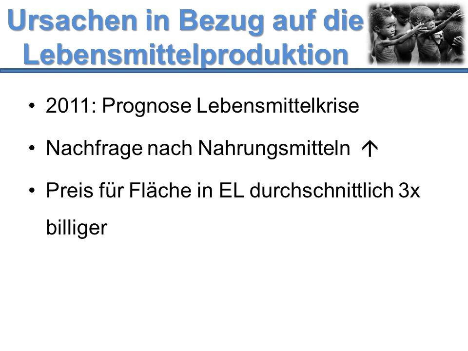Ursachen in Bezug auf die Lebensmittelproduktion 2011: Prognose Lebensmittelkrise Nachfrage nach Nahrungsmitteln  Preis für Fläche in EL durchschnitt