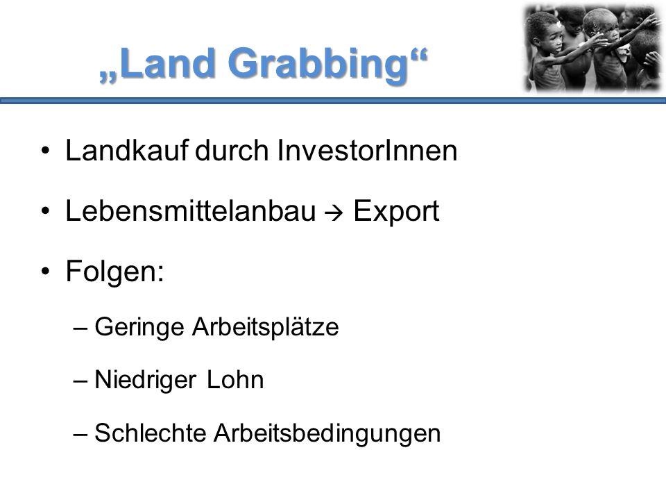 """""""Land Grabbing"""" Landkauf durch InvestorInnen Lebensmittelanbau  Export Folgen: –Geringe Arbeitsplätze –Niedriger Lohn –Schlechte Arbeitsbedingungen"""
