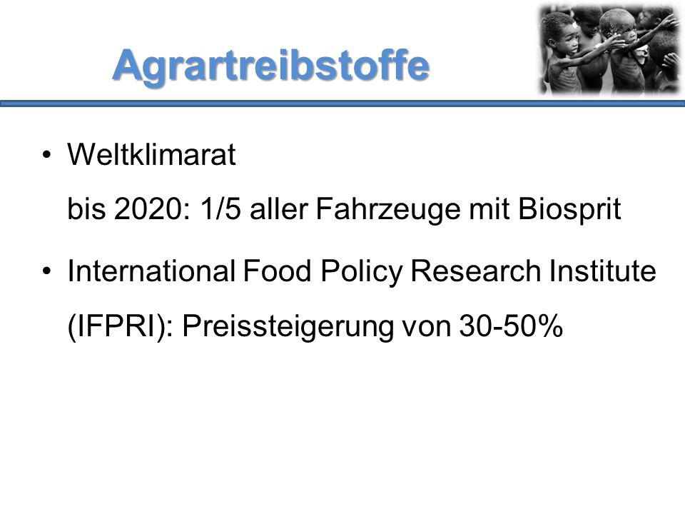 Agrartreibstoffe Weltklimarat bis 2020: 1/5 aller Fahrzeuge mit Biosprit International Food Policy Research Institute (IFPRI): Preissteigerung von 30-