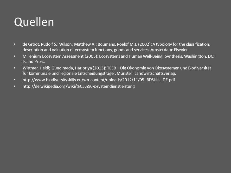 Quellen de Groot, Rudolf S.; Wilson, Matthew A.; Boumans, Roelof M.J.