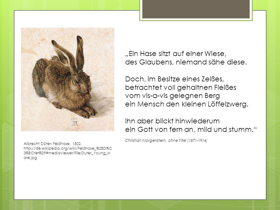 """Albrecht Dürer: Feldhase, 1502, http://de.wikipedia.org/wiki/Feldhase_%28D%C 3%BCrer%29#mediaviewer/File:Durer_Young_H are.jpg """"Ein Hase sitzt auf einer Wiese, des Glaubens, niemand sähe diese."""