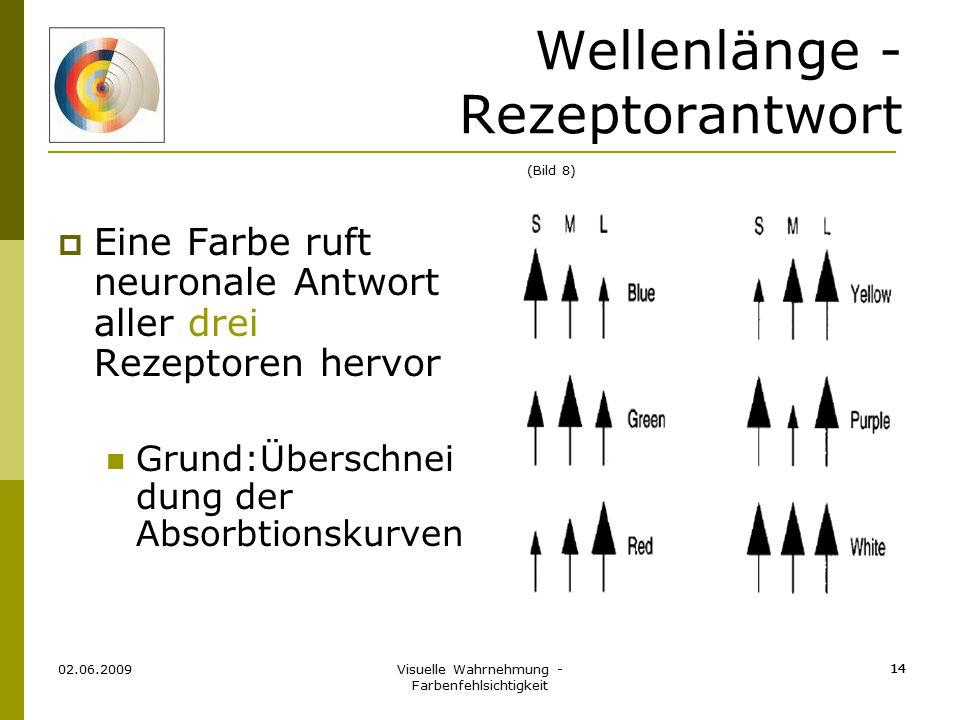 Visuelle Wahrnehmung - Farbenfehlsichtigkeit 14 Wellenlänge - Rezeptorantwort  Eine Farbe ruft neuronale Antwort aller drei Rezeptoren hervor Grund:Ü