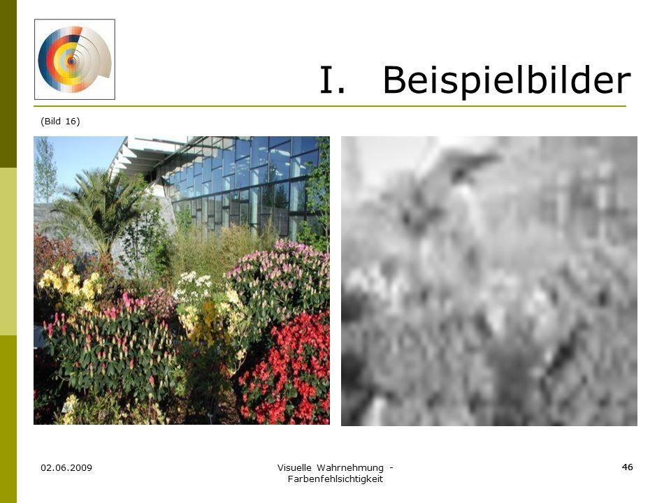 Visuelle Wahrnehmung - Farbenfehlsichtigkeit 46 I.Beispielbilder 02.06.2009 46 (Bild 16)