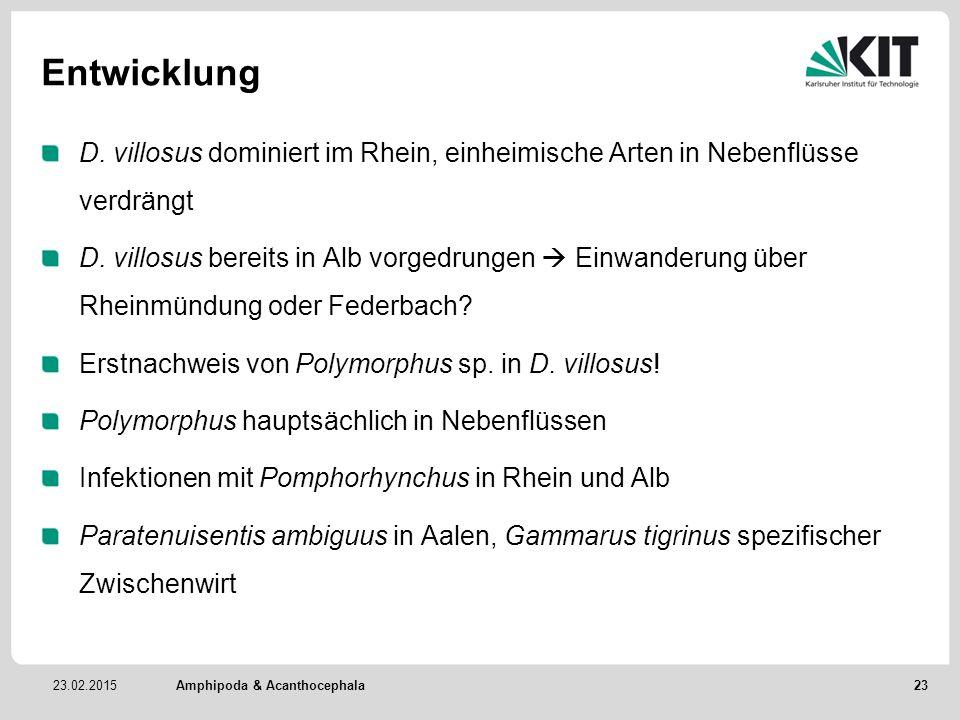 23.02.2015 Entwicklung D. villosus dominiert im Rhein, einheimische Arten in Nebenflüsse verdrängt D. villosus bereits in Alb vorgedrungen  Einwander