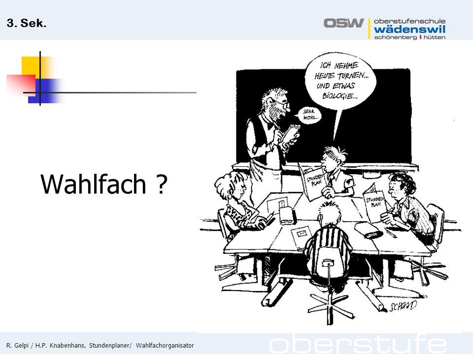 R. Gelpi / H.P. Knabenhans, Stundenplaner/ Wahlfachorganisator 3. Sek. Wahlfach ?