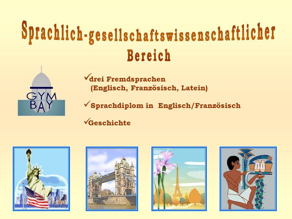 drei Fremdsprachen (Englisch, Französisch, Latein) Sprachdiplom in Englisch/Französisch Geschichte