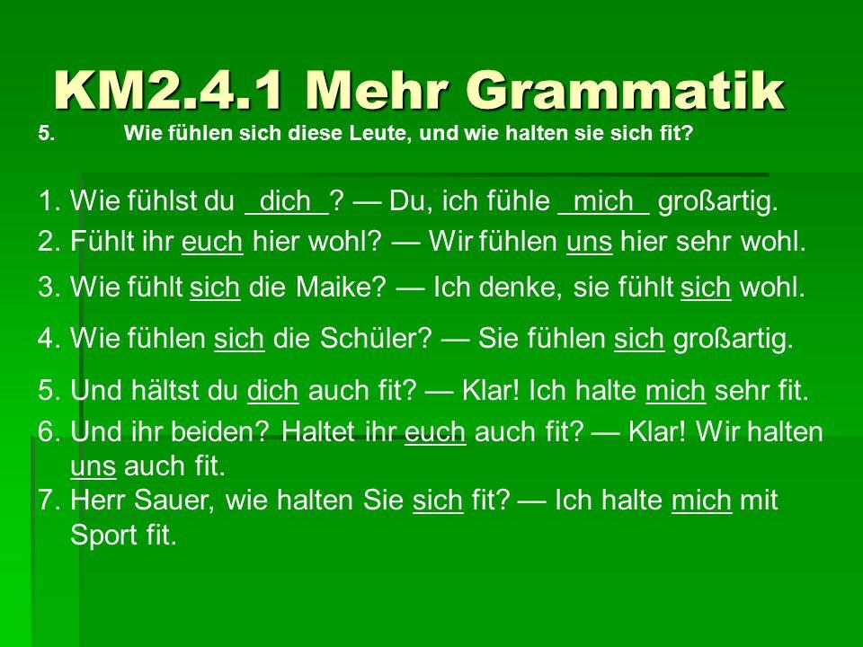 KM2.4.1 Mehr Grammatik 5.Wie fühlen sich diese Leute, und wie halten sie sich fit? 1.Wie fühlst du dich ? — Du, ich fühle mich großartig. 2.Fühlt ihr