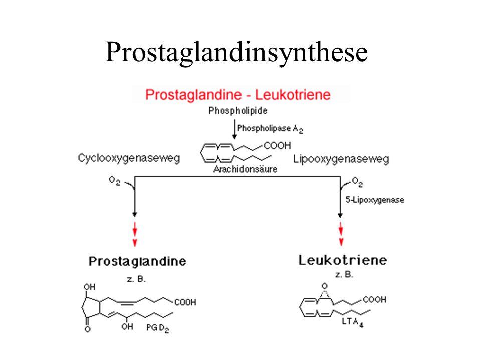 Cyclooxygenase Schlüsselenzym in der Biosynthese der Prostaglandine Isoformen der Cyclooxygenase: COX 1: konstitutiv in vielen Zellen vorhanden und ständig aktiv COX 2: von Entzündungsfaktoren induzierbar (z.B.
