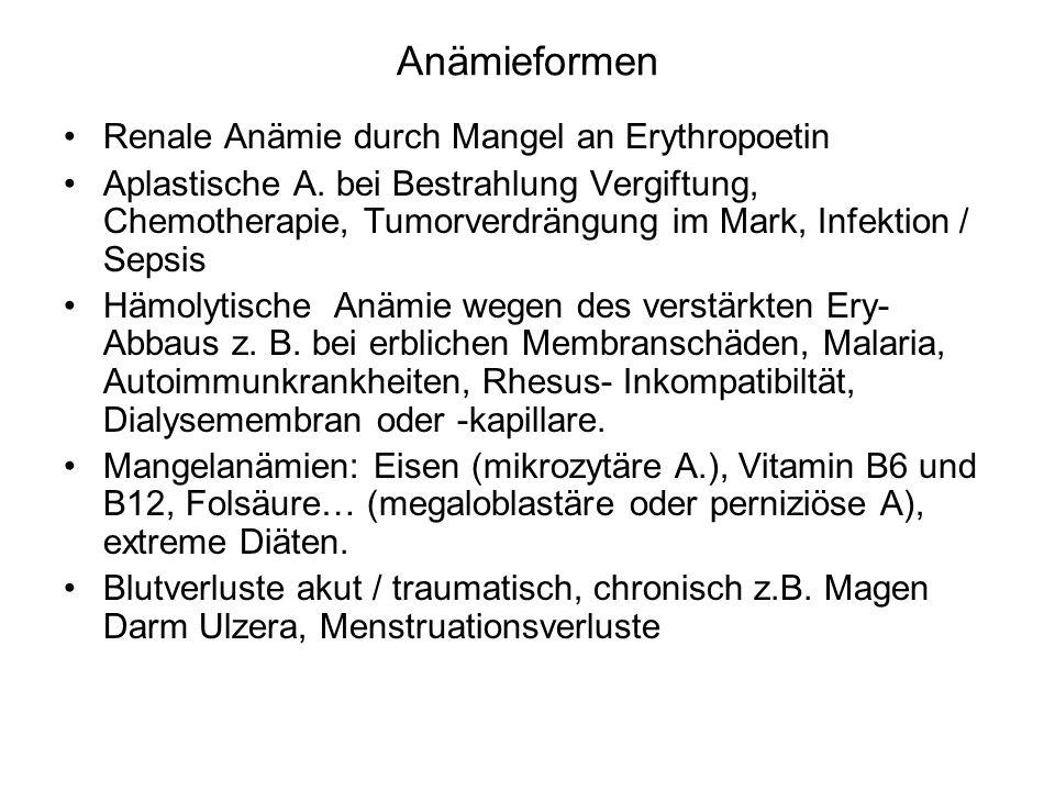 Anämieformen Renale Anämie durch Mangel an Erythropoetin Aplastische A. bei Bestrahlung Vergiftung, Chemotherapie, Tumorverdrängung im Mark, Infektion