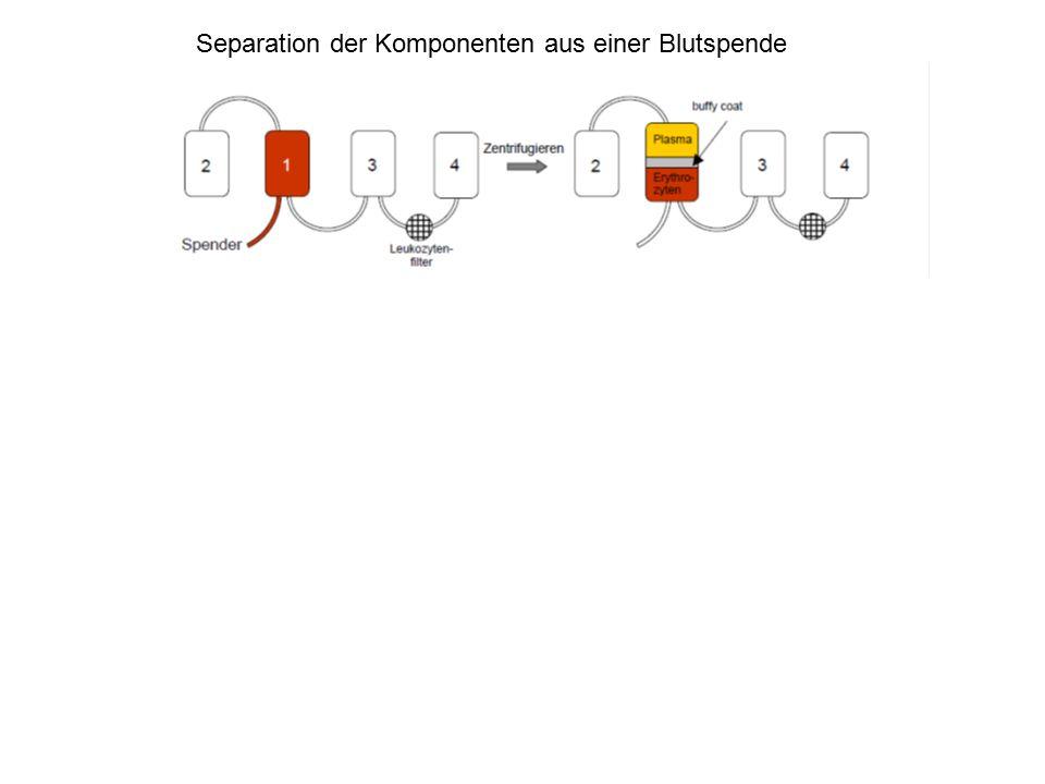 Immunogenität erythrozytärer Antigene bei Transfusion NameSystemImmunogenität DRh70 KKell10 cRh4 E 3,3 kKell1,5 eRh1,1 Fy a Duffy0,5 CRh0,2 Jk a Kidd0,1 SMNS0,08 sMNS0,06 Jk b Kidd0,03