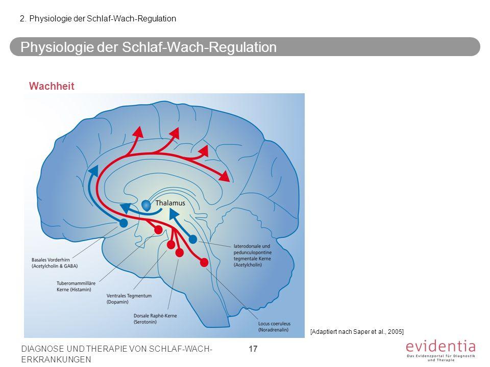 Physiologie der Schlaf-Wach-Regulation Wachheit 2. Physiologie der Schlaf-Wach-Regulation DIAGNOSE UND THERAPIE VON SCHLAF-WACH- ERKRANKUNGEN 17 [Adap