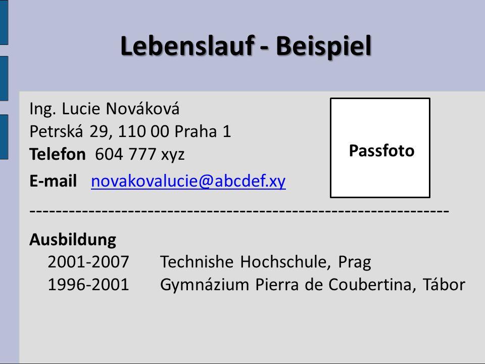 Lebenslauf Lebenslauf Berufspraxis 2004-2006 Profesia, spol.