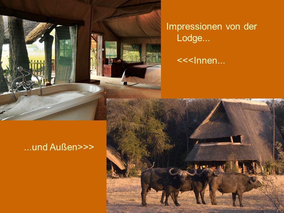 Impressionen von der Lodge... <<<Innen......und Außen>>>