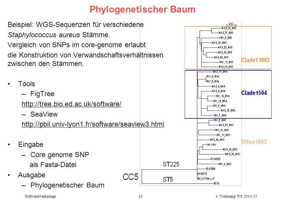 Phylogenetischer Baum Beispiel: WGS-Sequenzen für verschiedene Staphylococcus aureus Stämme. Vergleich von SNPs im core-genome erlaubt die Konstruktio