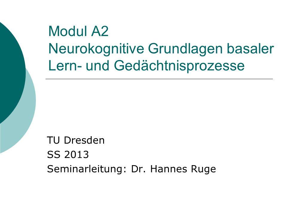 Modul A2 Neurokognitive Grundlagen basaler Lern- und Gedächtnisprozesse TU Dresden SS 2013 Seminarleitung: Dr.