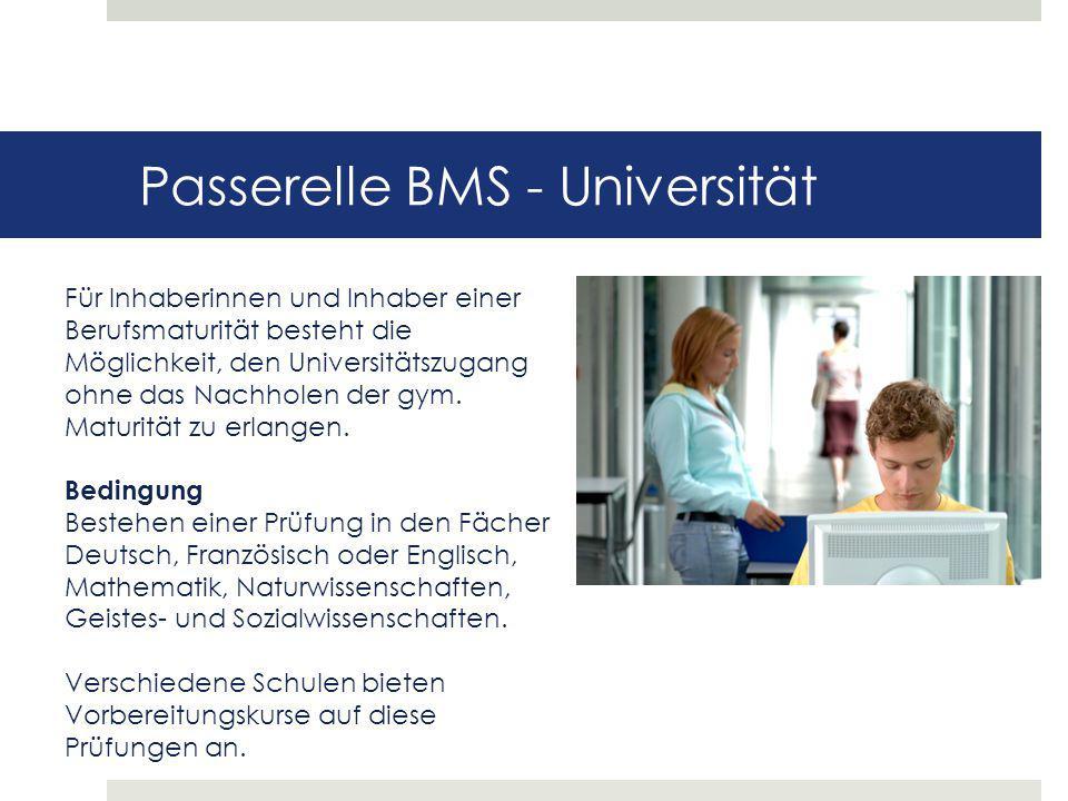 Passerelle BMS - Universität Für Inhaberinnen und Inhaber einer Berufsmaturität besteht die Möglichkeit, den Universitätszugang ohne das Nachholen der