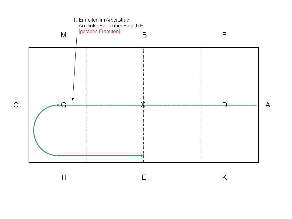 1.Einreiten im Arbeitstrab Auf linke Hand über H nach E [gerades Einreiten] A KEH C MBF XG D