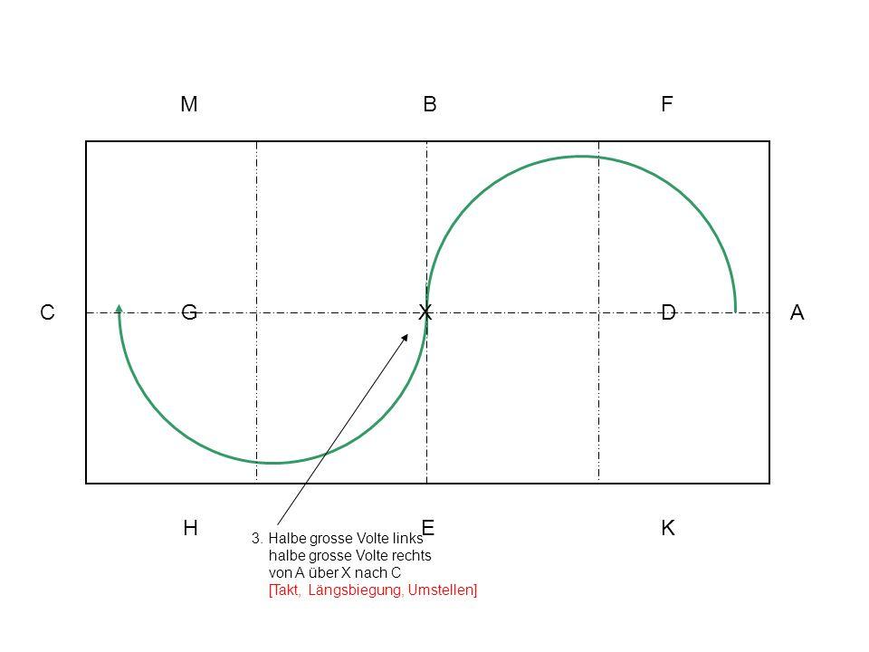 3. Halbe grosse Volte links halbe grosse Volte rechts von A über X nach C [Takt, Längsbiegung, Umstellen] A KEH C MBF XG D