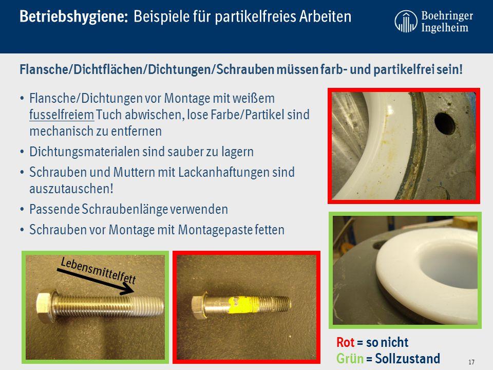 Betriebshygiene: Beispiele für partikelfreies Arbeiten Flansche/Dichtflächen/Dichtungen/Schrauben müssen farb- und partikelfrei sein! Flansche/Dichtun
