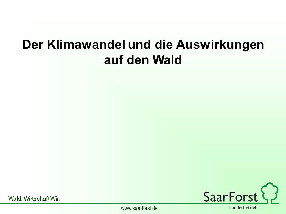 www.saarforst.de Wald. Wirtschaft Wir. www.saarforst.de Wald. Wirtschaft Wir. Der Klimawandel und die Auswirkungen auf den Wald