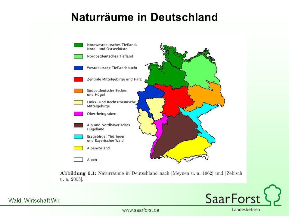www.saarforst.de Wald. Wirtschaft Wir. Naturräume in Deutschland