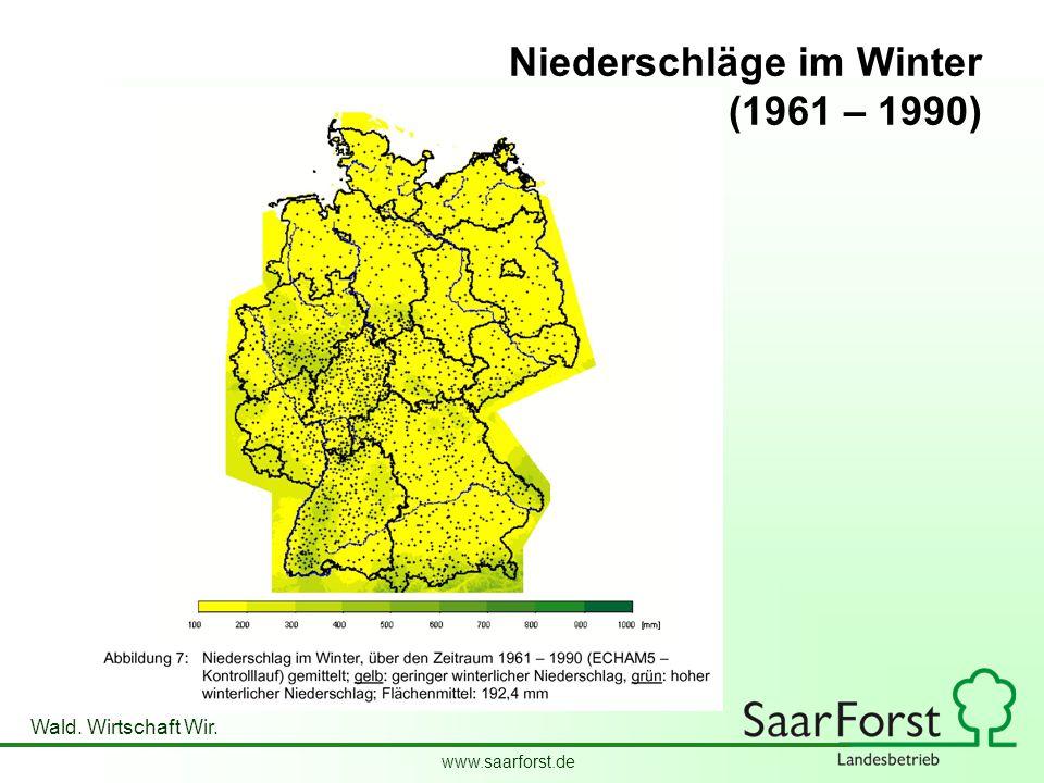 www.saarforst.de Wald. Wirtschaft Wir. Niederschläge im Winter (1961 – 1990)