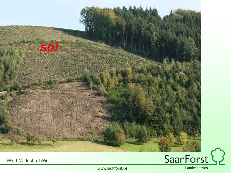 www.saarforst.de Wald. Wirtschaft Wir. Sooder so!