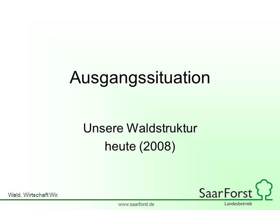 www.saarforst.de Wald. Wirtschaft Wir. Ausgangssituation Unsere Waldstruktur heute (2008)