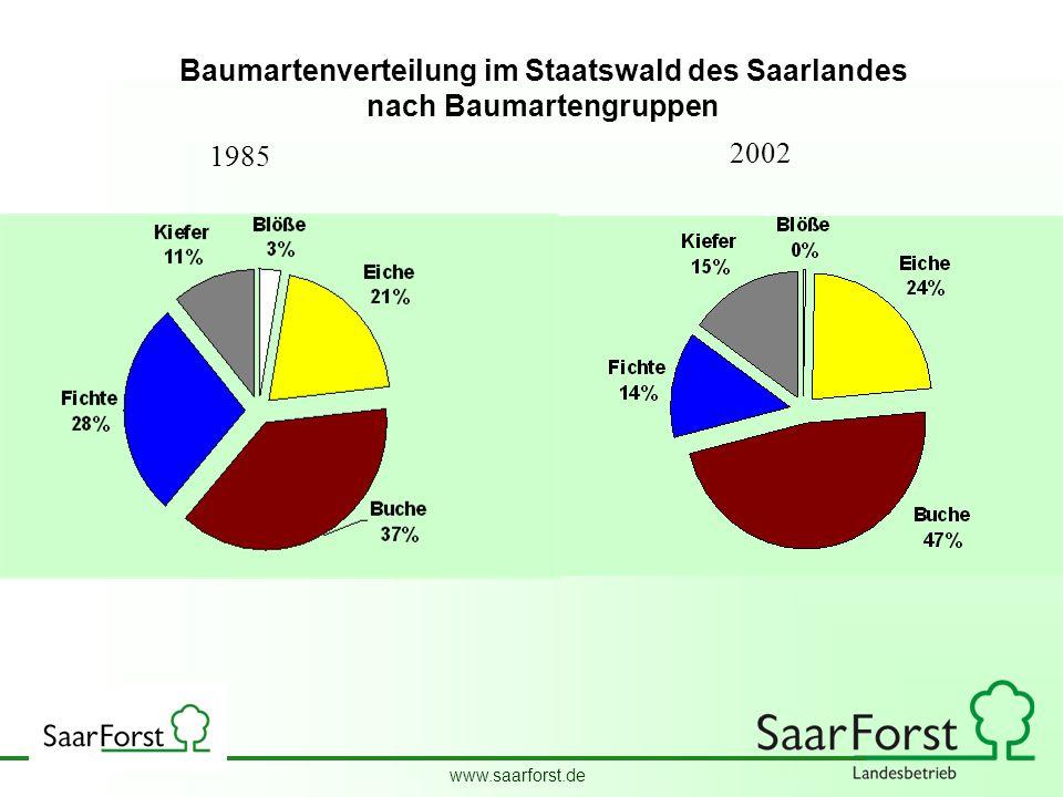 www.saarforst.de Wald. Wirtschaft Wir. 1985 2002 Baumartenverteilung im Staatswald des Saarlandes nach Baumartengruppen