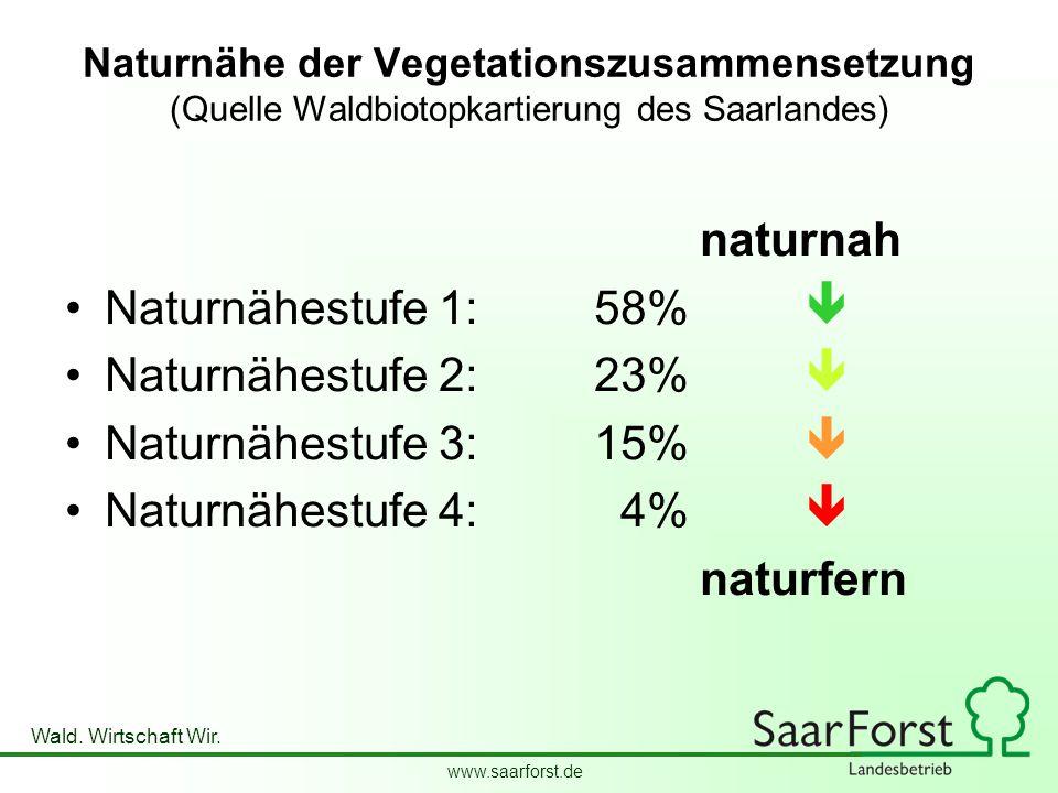 www.saarforst.de Wald. Wirtschaft Wir. Naturnähe der Vegetationszusammensetzung (Quelle Waldbiotopkartierung des Saarlandes) naturnah Naturnähestufe 1