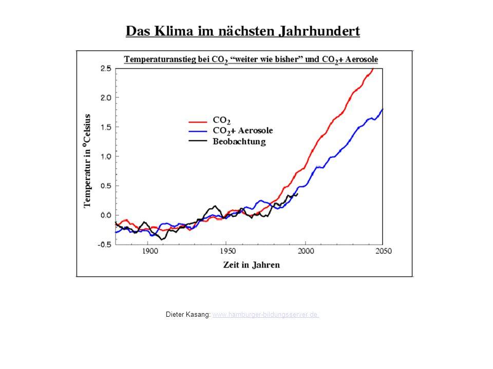 Das Klima im nächsten Jahrhundert Dieter Kasang: www.hamburger-bildungsserver.de,www.hamburger-bildungsserver.de,