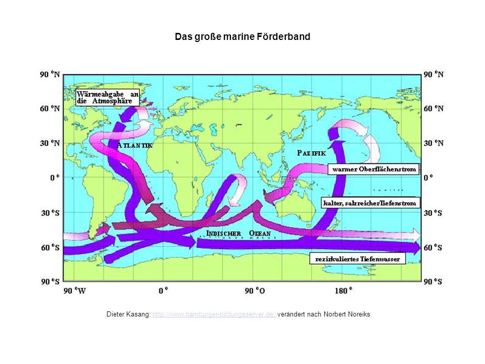 Das grosse marine Förderband Das große marine Förderband Dieter Kasang: http://www.hamburger-bildungsserver.de, verändert nach Norbert Noreikshttp://w
